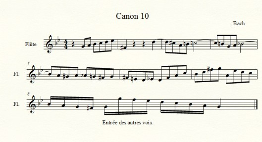 canon 10.jpg
